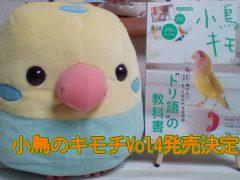『小鳥のキモチ』第4号(Vol4)の発売決定