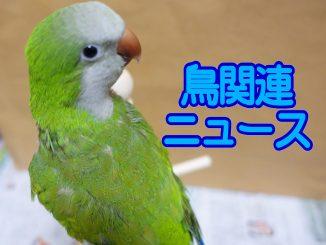 news_quaker