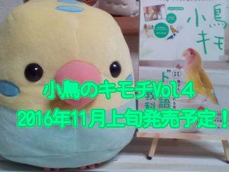 小鳥のキモチ4号(Vol4)発売日決定