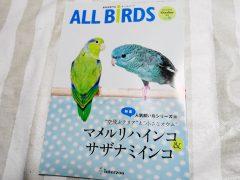 オールバード(ALL BIRDS)2016年10月号