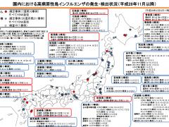 鳥インフルエンザ発生状況20170209東京事例