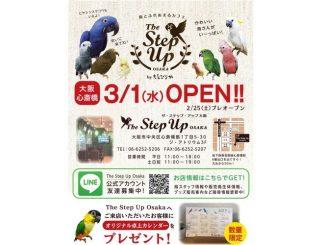 The Step up Osaka(えとぴりか)のチラシ
