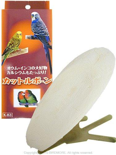 鳥の副食・カルシウムの補給にイカの甲