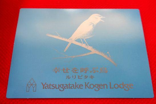 幸せを呼ぶ青い鳥のチョコレートのカード