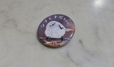 鳥フェス新宿の入場特典のシマエナガ缶バッチ
