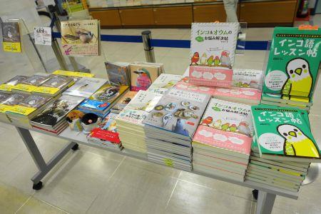 鳥フェス新宿の書籍ブース