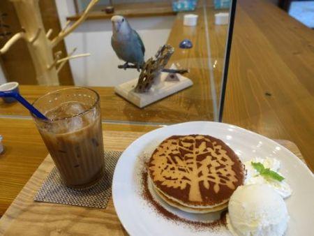 インコカフェ「LoveBird Cafe CHERRY」の鳥スイーツ「鳥が隠れたパンケーキ」