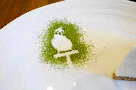 インコカフェ「LoveBird Cafe CHERRY」の鳥スイーツ「オカメインコのレアチーズケーキ」のオカメインコ