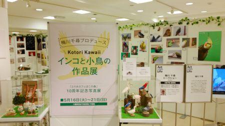 とりみカフェぽこの森10周年記念写真展