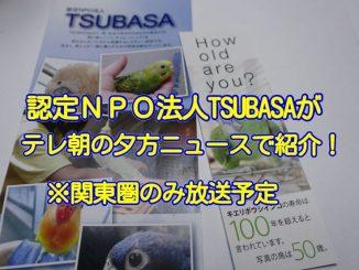 認定NPO法人TSUBASAがテレビ朝日のスーパーJチャンネルで紹介
