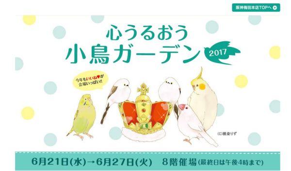 心うるおう小鳥ガーデンが2017年6月21日から7日間開催!