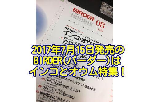 2017年7月15日発売のBIRDERはインコ・オウム大事典