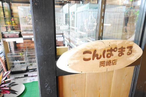 鳥カフェ「鳥茶かふぇTORIKOYA」併設のこんぱまる岡崎店
