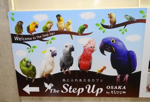 大阪・心斎橋にある鳥カフェ「The Step Up OSAKA」の看板