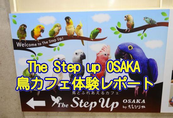 The Step Up OSAKA体験レポートのアイキャッチ