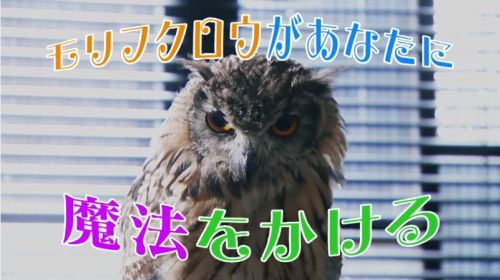 20170821_inko_004