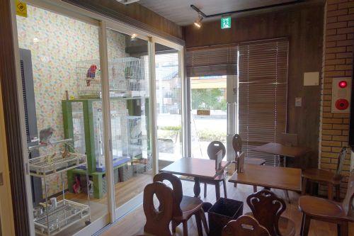 関東地方の埼玉・東川口の鳥カフェ「オウムのカフェ FREAK」のお店の内装・内観・雰囲気・様子