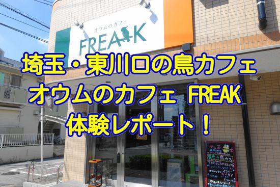 関東の埼玉県・東川口の鳥カフェ「オウムのカフェ FREAK」の体験レポート