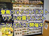 愛鳥フォトコンテストのリアル投票イベント開催中!