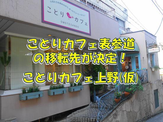 ことりカフェ表参道の移転先が東京・上野に決定!