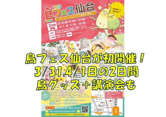 鳥イベント「鳥フェス仙台」が東北・宮城県仙台市にて初開催、鳥の専門家による講演も