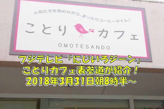 2018年3月31日のフジテレビのにじいろジーンにことりカフェ表参道が紹介