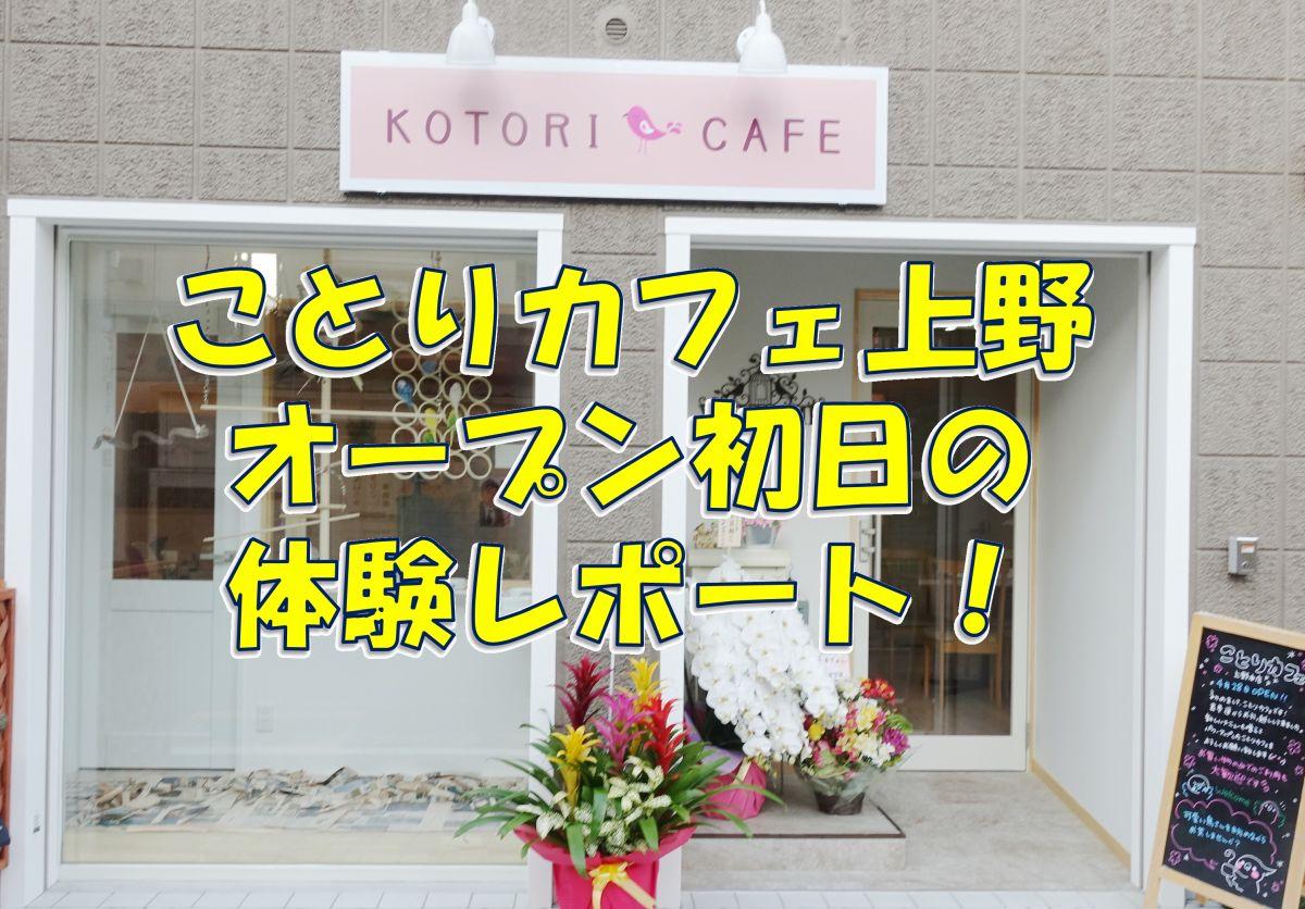 ことりカフェ上野本店のオープン初日の体験レポート