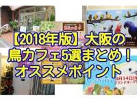 2018年版大阪の鳥カフェ5選まとめ・特徴とオススメポイント、システムを紹介