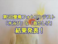 第5回愛鳥フォトコンテスト「水浴び」「首かしげ」の結果発表