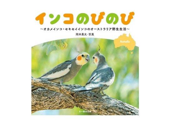 岡本勇太氏の野生のセキセイインコとオカメインコの写真集「インコのびのび」が11月14日に発売!