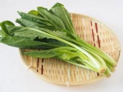 ほうれん草は、インコなどの愛鳥に与えないほうがよい緑黄色野菜