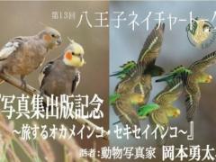 インコのびのび出版記念!岡本勇太氏トークショーが12月8日(土)に第13回八王子ネイチャーウォークで開催