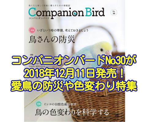 コンパニオンバードNo30が2018年12月11日発売!愛鳥さんの防災や色変わりが特集