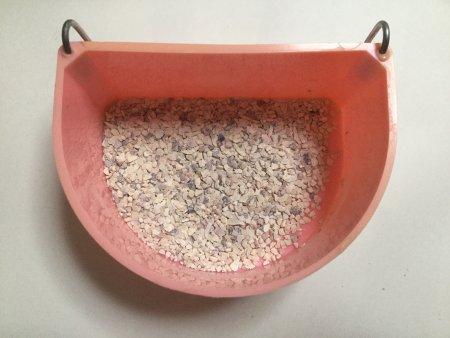 インコに通常の食事の容器とはボレー粉を別に与える