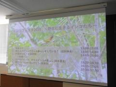 インコフェスタ2019の参加レポート!専門家による野生インコの講演会