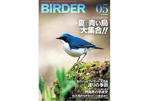 4月16日発売のBIRDER(バーダー)5月号にセキセイインコ15万羽の大群が掲載!