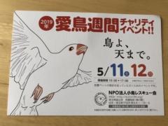 NPO法人・小鳥レスキュー会主催の愛鳥週間チャリティーイベント「鳥よ、天まで」のチラシ・フライヤー