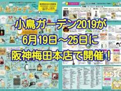 心うるおう小鳥ガーデンが2019年6月19日~25日に阪神梅田本店で開催!