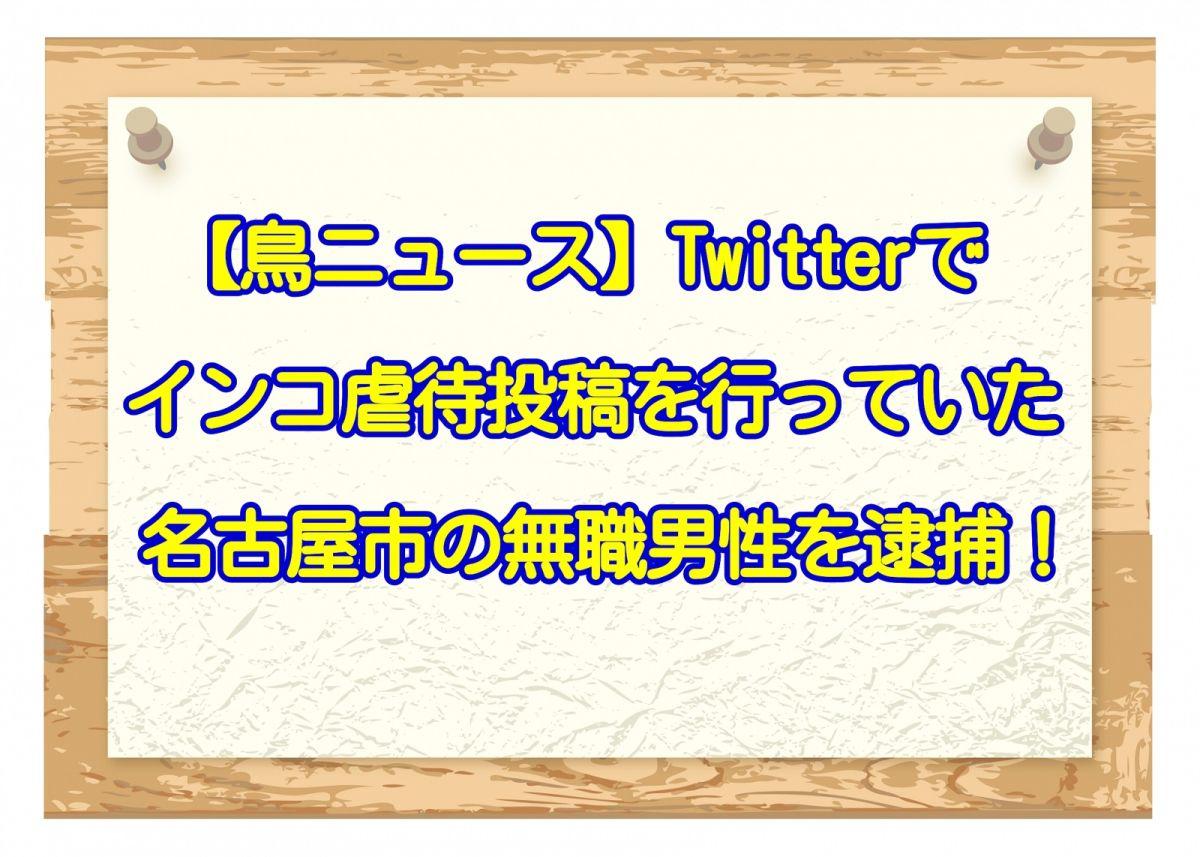 【鳥ニュース】Twitterでインコ虐待投稿を行っていた名古屋市の無職男性を逮捕!