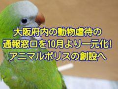 大阪府内の動物虐待の通報窓口を2019年10月より一元化!大阪のアニマルポリス設立へ