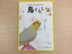 鳥ぐらし(2019年10月発売)の鳥雑誌の表紙。感想・レビューを紹介