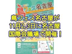 鳥フェス名古屋2019が11月2日3日に名古屋国際会議場にて開催!
