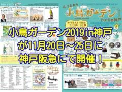 小鳥ガーデン2019in神戸が2019年11月20日~25日に神戸阪急にて開催!