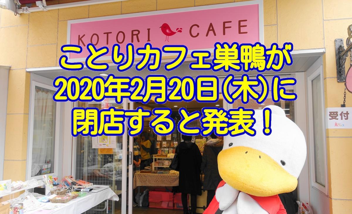 ことりカフェ巣鴨が2020年2月20日に閉店すると発表!3年を超える歴史に幕