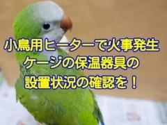 【鳥ニュース】愛鳥家のインコのケージに設置したヒーターがショートして火災事故が発生!今一度ケージに取り付けた保温器具の確認を!