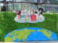 掛川花鳥園の新しいバードショー「ワールド鳥ップ」」