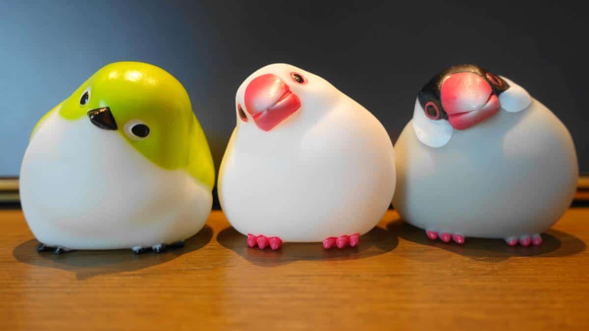 鳥ガチャ「やわもっちことり」の白文鳥、桜文鳥、メジロの3種類