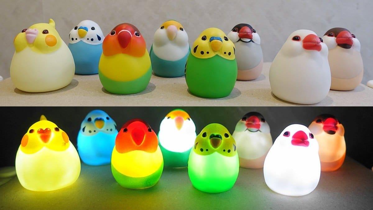 まんまるかわいい小鳥ライトの全8種類フルコンプリート(オカメインコ、セキセイインコ、コザクラインコ、ボタンインコ、文鳥)の通常時とライトをONにした様子