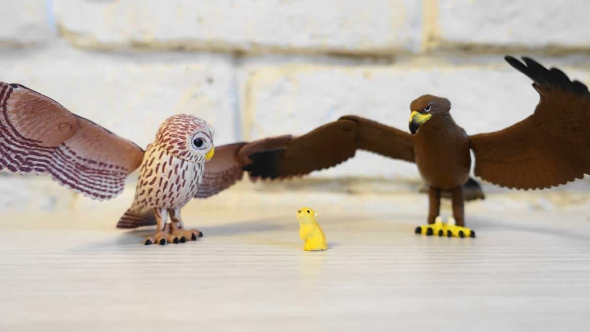 猛禽類ガチャ「鳥たちの世界」のフクロウとイヌワシ。翼や頭、脚が稼働する精巧なフィギュア