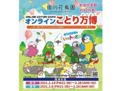 2021年の掛川花鳥園のことり万博はオンライン開催!2月と3月の前半・後半に分かれてのオンラインイベント